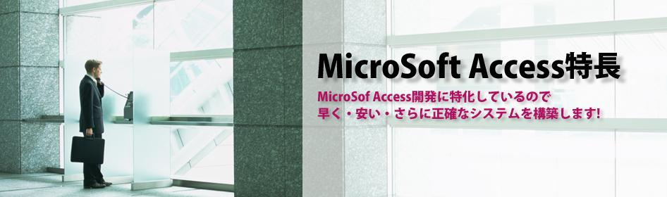 MicroSoft Accessの開発(マイクロソフト アクセスの開発)株式会社アップロード特長