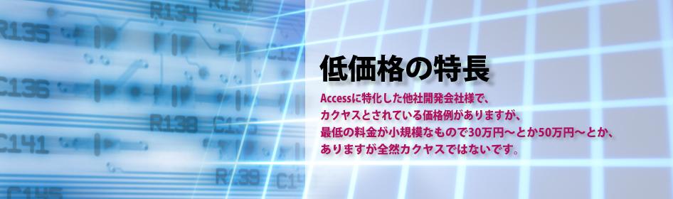 MicroSoft Accessの開発(マイクロソフト アクセスの開発)低価格の特長
