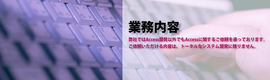 MicroSoft Accessの開発(マイクロソフト アクセスの開発)業務内容
