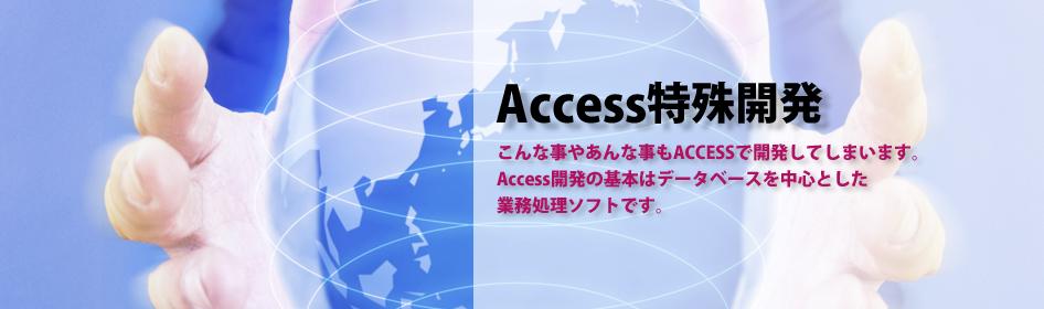 MicroSoft Accessの開発(マイクロソフト アクセスの開発)特殊開発