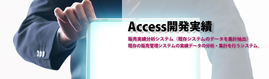 MicroSoft Accessの開発(マイクロソフト アクセスの開発)開発実績