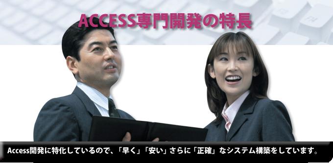 MicroSoft Access開発( マイクソフト アクセス開発 )ACCESS(アクセス)専門開発の利点